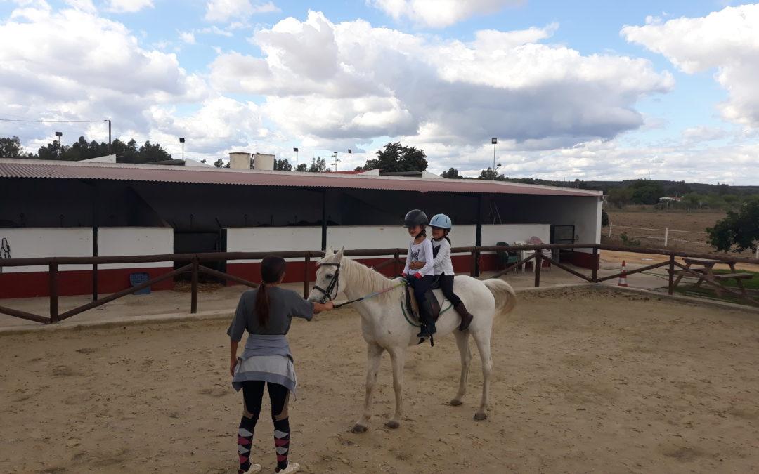 Pony Club de CHMO